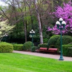 Летнее благоустройство охватит 186 улиц, парков и зон отдыха города